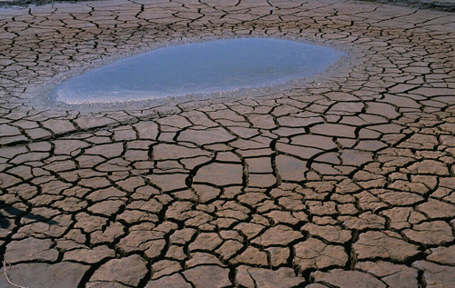 理顺六大关系刻不容缓 土壤污染防治任重道远