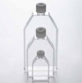 德国Eppendorf 艾本德 细胞培养瓶, T-25 CellRepe 货号:0030710401