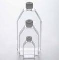 德国Eppendorf 艾本德 细胞培养瓶 T-25 TC处理 货号:0030710100
