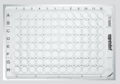 德国Eppendorf 艾本德 细胞培养板, 48孔, TC处理,货号:0030 723.112
