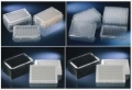 Nunc 436007氨基酶标板和板条