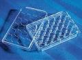 美国Corning3987,骨实验聚苯乙烯24孔表面培养板,无菌,独立包装