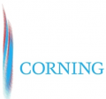 美国Corning康宁4138盒装灭菌200U滤芯l吸头