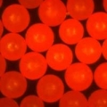 美国cospheric Fluorescent Red Polyethylene Microspheres 0.995g/cc - Various Sizes 10um to 1180um (1.2mm)